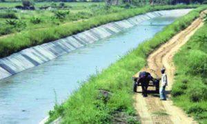 SYL Issue, Haryana Hope, Center Govt, INLD, BJP