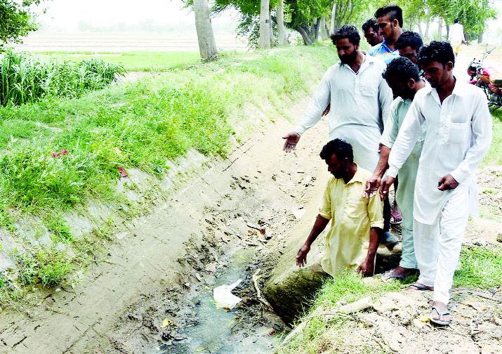 Canal, Ban, Paddy Crop, Affected, Farmers, Worried, Punjab