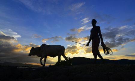 Hindi Article, Farmers, Crop, Kisan Andolan, Poor