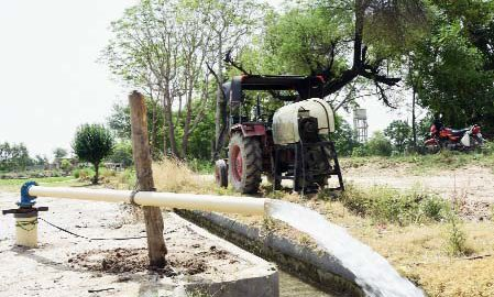 Thermal Plant, Planting, Paddy, Farmers, Crop, Punjab