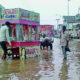 Rain, Sangat Mandi, Cotton Crop, Profit, Farmers