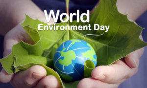 Hindi Article, Environment Day, Pollution, Nature, Source