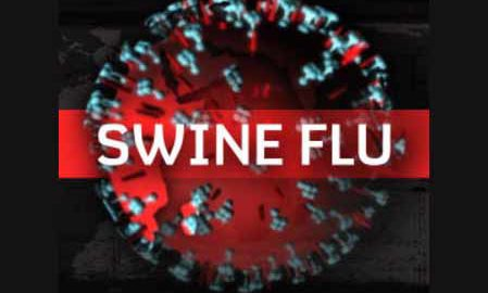 Death, Elderly, Swine Flu Virus, Health Department, Punjab