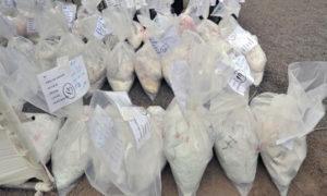 Smuggler, Arrested, Opium, Police, Millions, Haryana