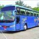 Preparing, Tighten Screws, Illegal Buses, Punjab