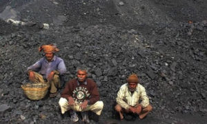 Loss, Pension Fund, Coal Employees, Report