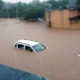 Flood Havoc, Rajasthan, Maharashtra, Died, Animal, Mount Abu