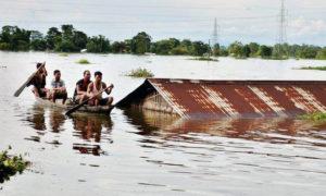 Flood, Cataclysmic, Mansoon, Crop, Waste, Farmer, Villagers