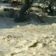 Flood, Doda, Died, Homeless, Jammu