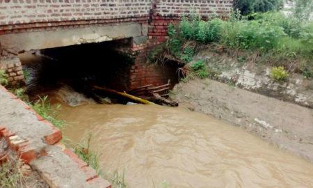 Broken, Ramkali Miner, Khimachari Village, Farmer, Crop, Haryana
