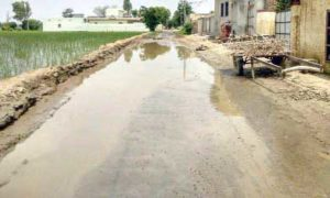 Demand, Solution, Problem, Villagers, Road Accident, Punjab