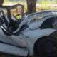 Student, Death, Car Accident, Injured, Collision, Tree, Punjab