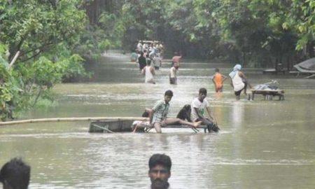 Bihar, Rivers, Boom, Katihar, Berndi, Flood, Died