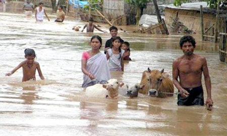 Flood, Natural Disaster, Farmer, Villager, Greenery