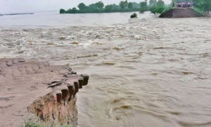 Bihar, Killed, Floods, Danger, Influenced, CM, Nitish Kumar