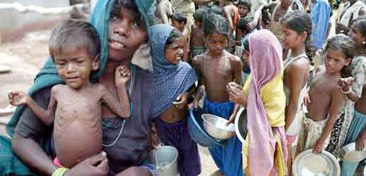 India, Hunger, Free, Challenge, Poor