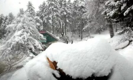Srinagar, Avalanche, Dead, Injured