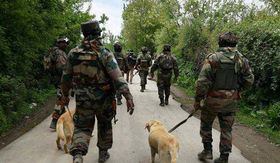 Security Forces, Launch, Caso, South Kashmir
