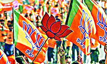 BJP, Effort, Allies