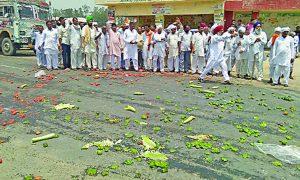 Protest, Farmers, Govt
