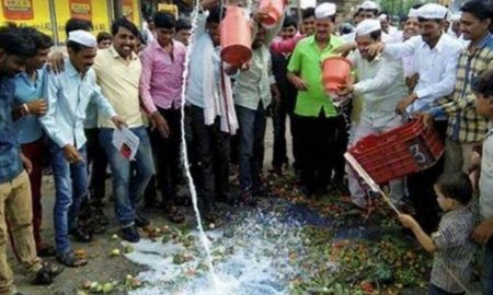 Farmer, Protests, Vegetables, Road, Punjab, Madhya Pradesh