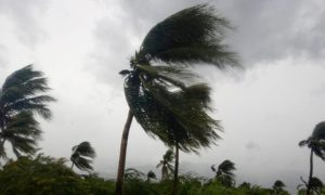 Delhi-NCR, Storms, Daily, Next, Three, Days