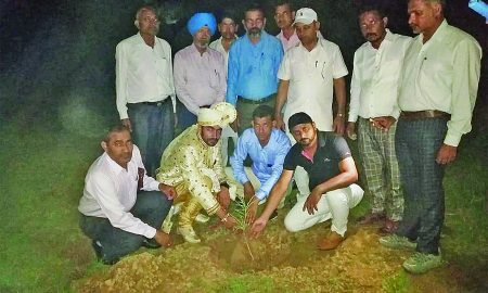 Tree Plantation, Dera Sacha Sauda Saint Dr. MSG
