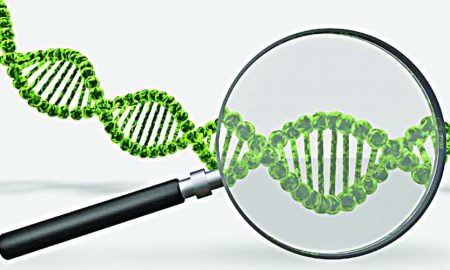 DNA, Law, Criminals, Search