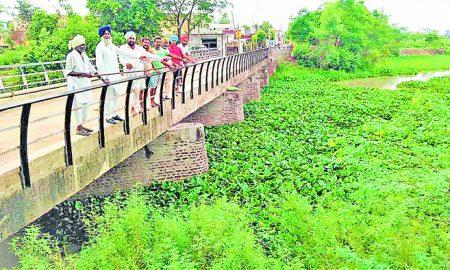 Drain uickly, big losses, Sarpanch, Punjab