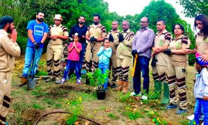 Incarnation Day of MSG, Mega Tree Plantation, Dera Sacha Sauda, Dera Followers
