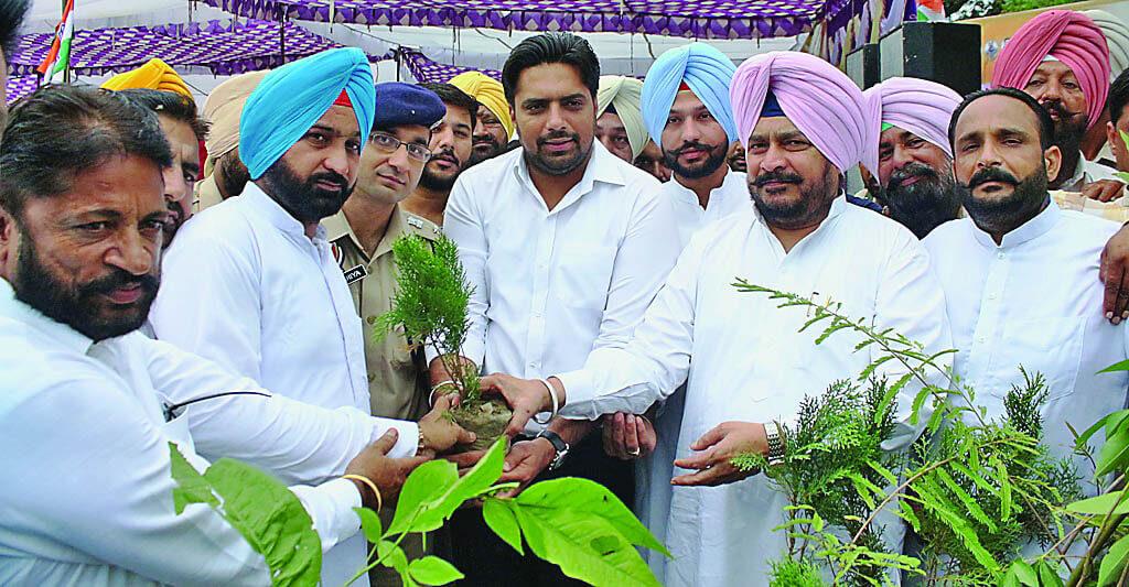 2 Million Plants, Planted, Punjab State