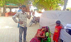 Tibbi Rajasthan