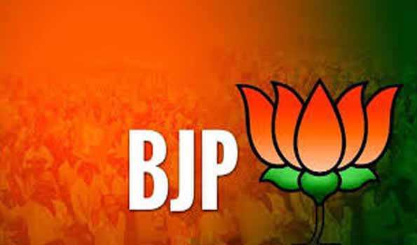 Delhi Violence , BJP