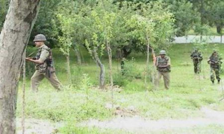 Terrorist, Indian Army, Encounter, Tral, Jammu Kashmir