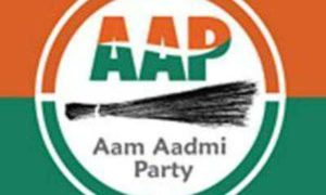Aam Aadmi Party, Common Punjabi