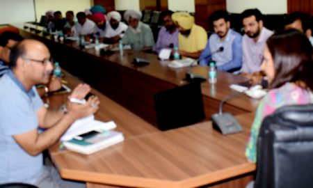 Officers, Legal Action, Deputy Commissioner, Panchayats, Record, Punjab