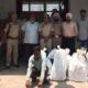 Smuggler, Arrested, Liquor, Recovered, Punjab