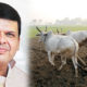 Maharashtra Govt, Generosity, Farmers, Crop