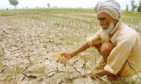 Government, Farmers, Serious, Agrarian Crisis, Raised, Strike, Helpless