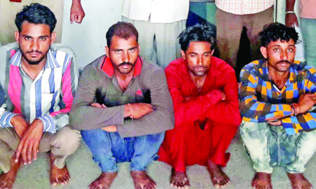 Deer, Rabbit, Hunting, Case, Police Inquiry, Rajasthan