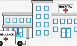 Health Centers, Open, Treatment, Disease, Haryana