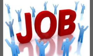 Job Fair, Students, Job, Examination, Interview
