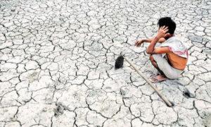 Farmers, Suicide, Summer, Crop, Loss