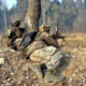 Army, Killed, Terrorists, Encounter, Kashmir