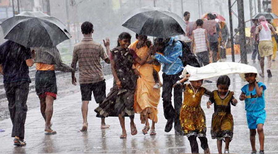 Monsoon, Maharashtra, Died, Falling, Lightning, Rain