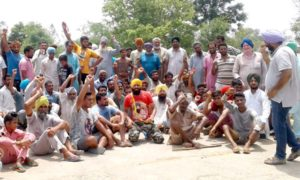 Farmers, Protest, Administration, Raised, Strike, Crop