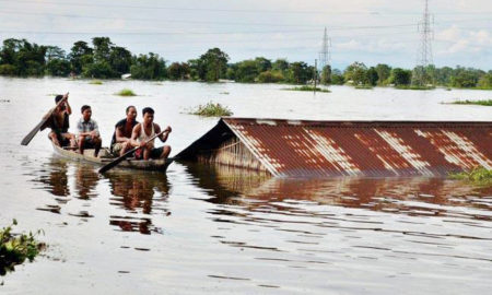 Flood, Cataclysmic, Mansoon, Crop, Waste, Farmer, Villagers