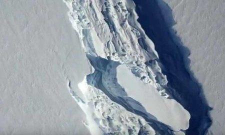 Large Part, Glacier, Antarctica, Break, Sea, Scientist