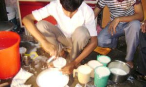 Drinking, Milk, Poisoning, Adulteration, Hindi Article, Experts