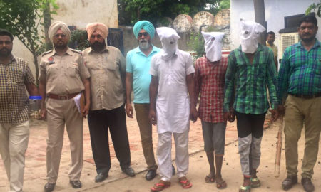 Robbery Gang, Arrested, Weapons, Police, Punjab